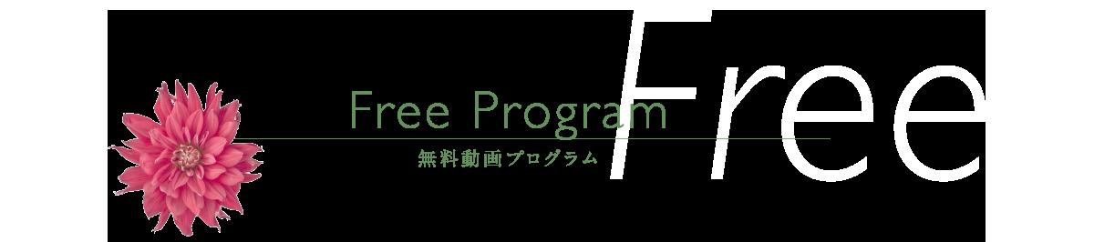 Free Program無料動画プログラム